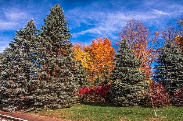 Fall Colors @ Jonesville Depot & Adrian, MI. by...