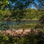 Green Lake Located inside Waterloo State Recreation Area