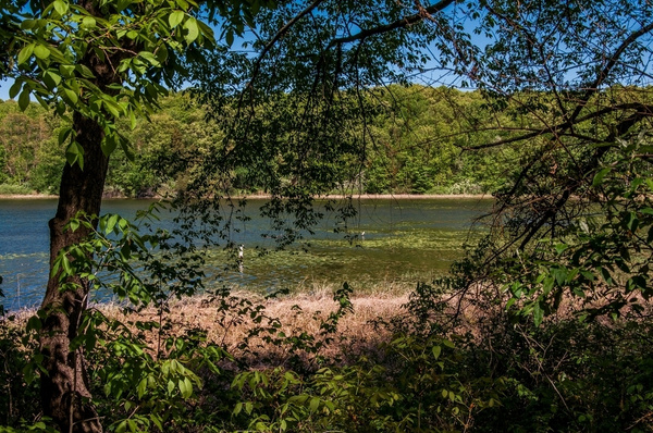 Green Lake Located inside Waterloo State Recreation Area...