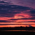 Sunrise Over Flooded Monroe County Farm Field June 2015
