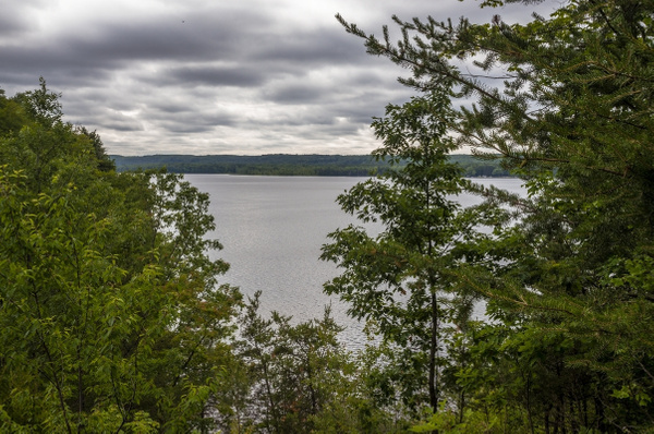 Hodenpyl Dam Pond & The Manistee River in Mesick,...