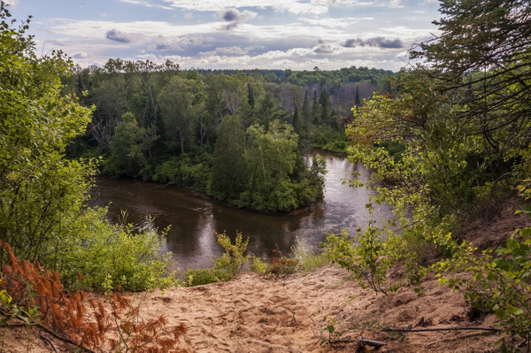 Sand Dune on the edge of the Manistee River south of...
