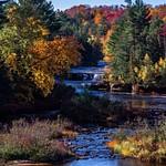 2015 Fall Colors @ Tahquamenon Falls State Park in the Upper Peninsula of Michigan