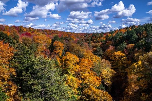 2015 Fall Colors @ Tahquamenon Falls State Park in The...