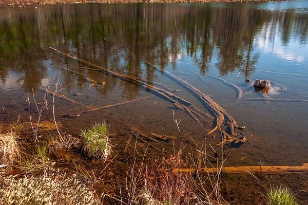 2016 Walton's Pond @ Walton's Junction in Northern...