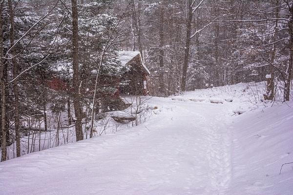 2016 Lake Ann Covered Bridge with Snow Dec. by SDNowakowski