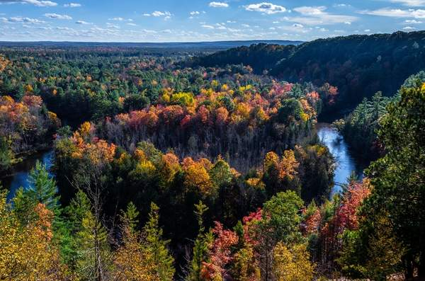 Fall Colors on the Manistee River
