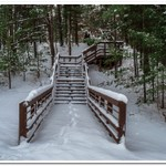 2018 Fresh snow on the Pine River in Northern, Michigan