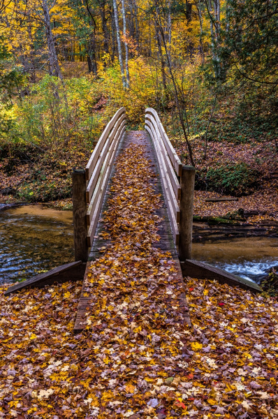 2018 Fall Colors along the North Country Trail on the...
