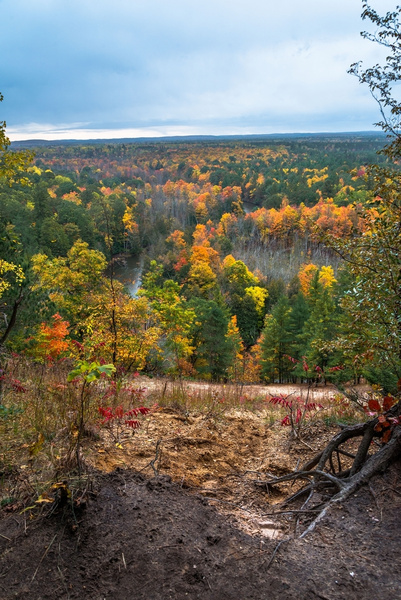 2019 Manistee River Fall Colors in Northern Michigan by...
