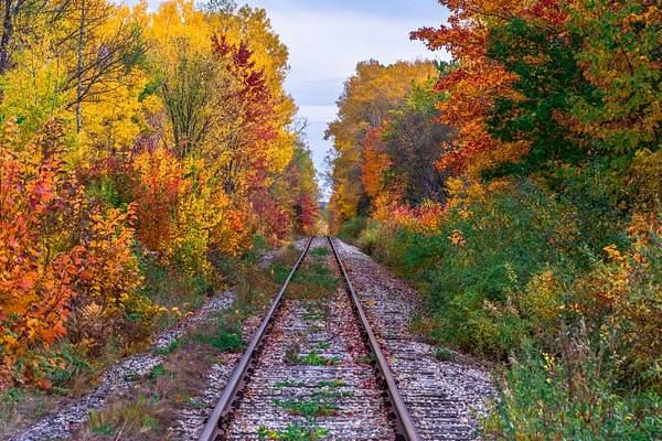 Rail Line In Color