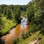 2016 Little Manistee River on a sunny day in July