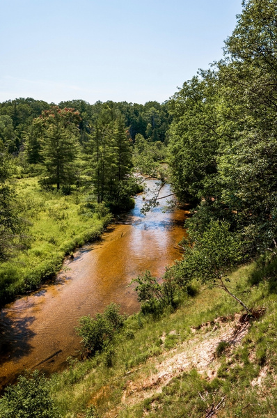 2016 Little Manistee River on a sunny day in July by...