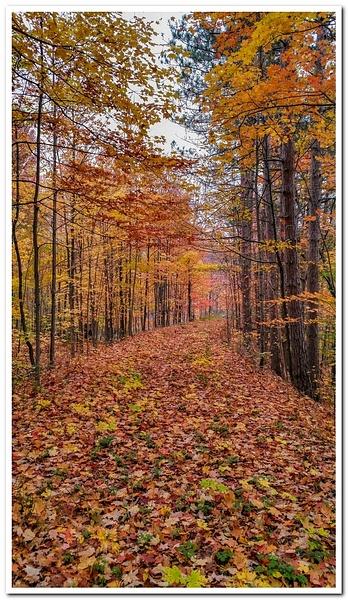 2020 Fall Colors on Dayhoff Lake & Sleeping Bear...