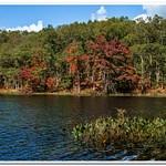 2020 Fall Colors @ Highbanks Lake Campground
