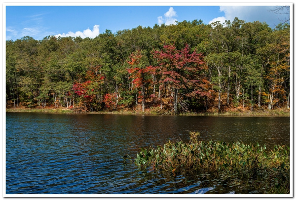 2020 Fall Colors @ Highbanks Lake Campground by...