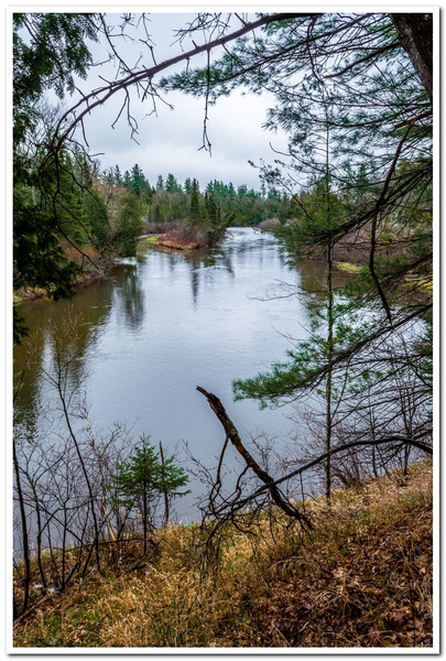 2021 Manistee River Pics and 2020 Manistee River...