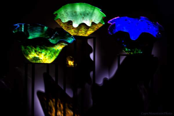 Chihuly Glass 4