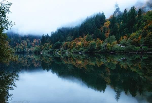Umpqua Foggy Reflections