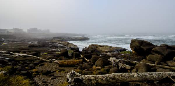 Foggy Morning In Yachats
