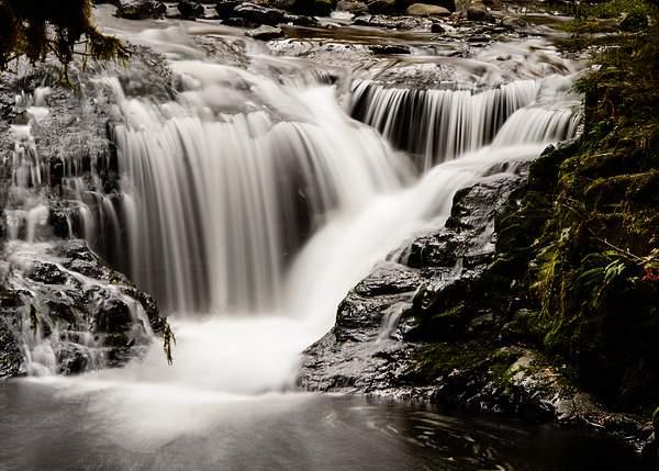 Sweet Creek Falls 3