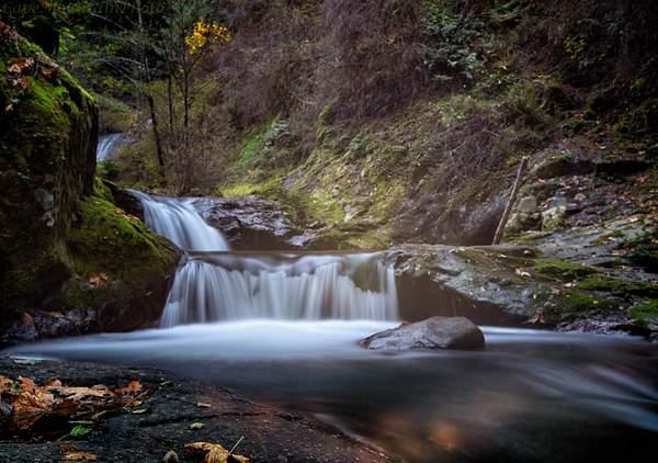 Sweet Creek Falls 2013