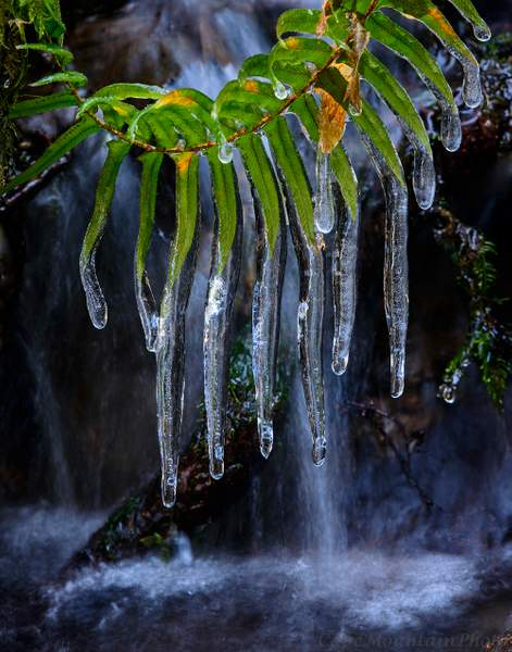 Icicle Falls
