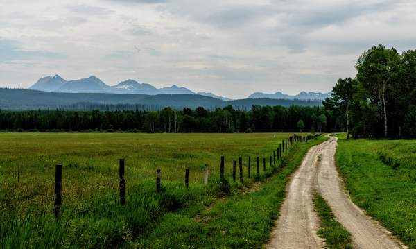 Down the Lane Towards the Mountains