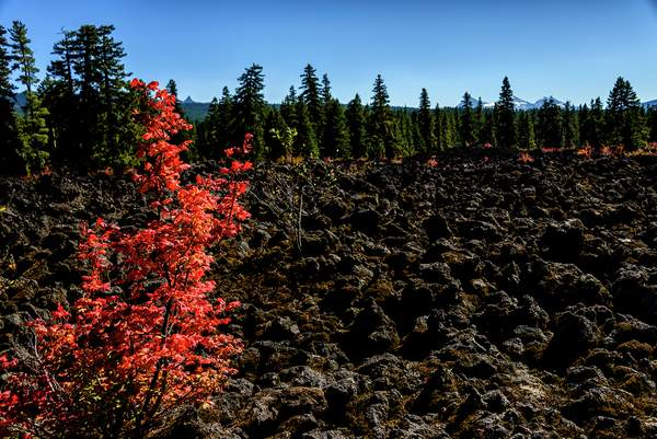 Falll Comes to the Lava Beds