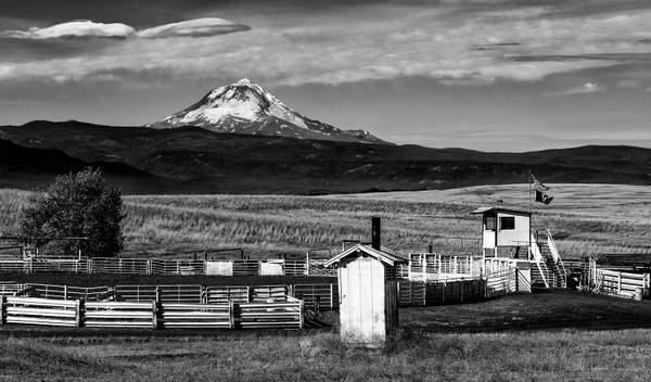 Mt Hood Watches Over the Rodeo