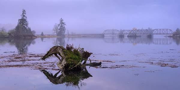 Foggy-Dawn-on-Siuslaw-