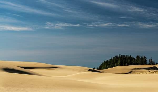 Dunes Lines