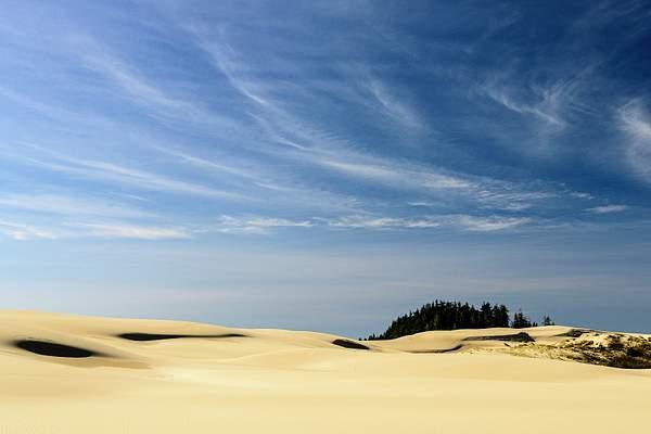 Dunes Lines 2