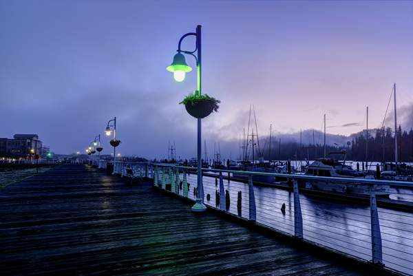 Marina Boardwalk Foggy Dawn