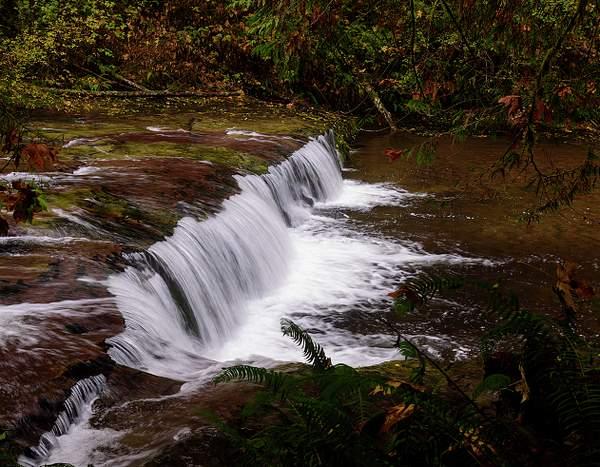 Sweet Creek in the Fall 2