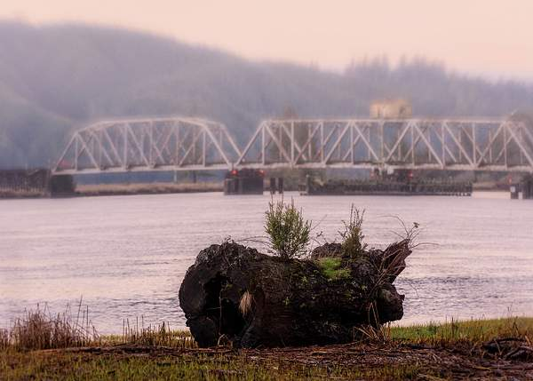 Train Bridge And Log