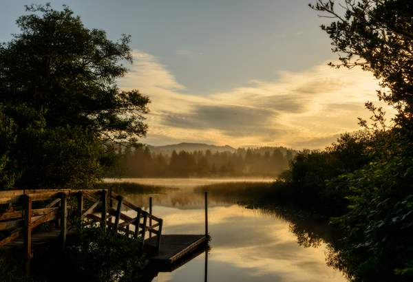 Misty Morning at Sutton Lake