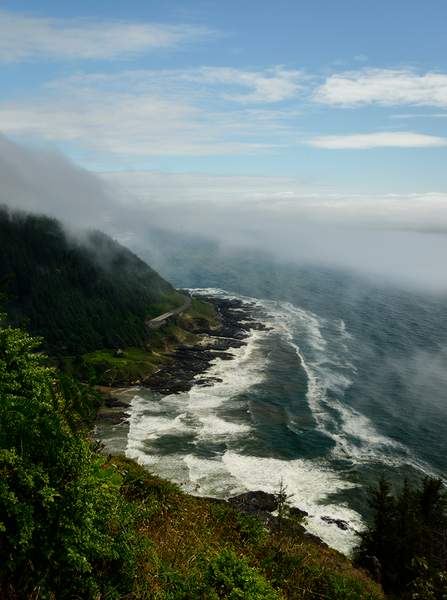 Vertical Fog Lifting from Cape Perpetua Viewpoint