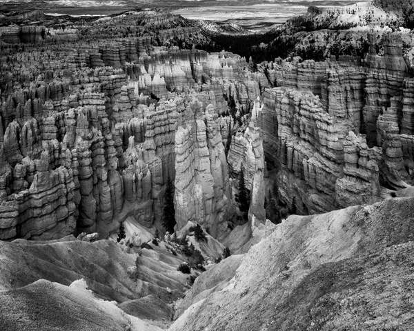 Bryce Canyon Black and White