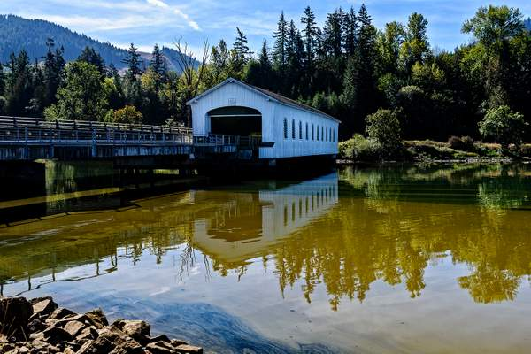 Covered Bridge On Polluted Dexter Pond