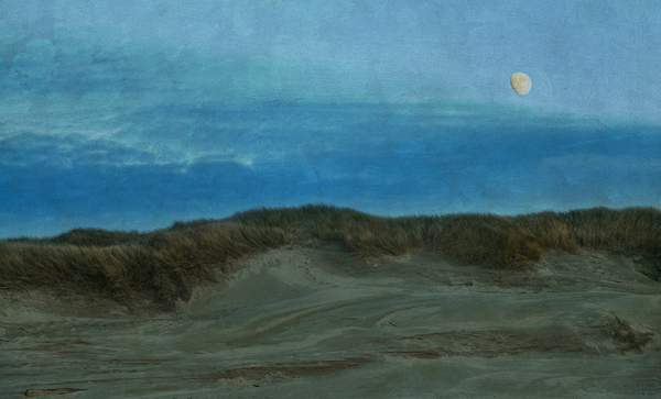 Moon Over the Dunes In Twilight with Textures(