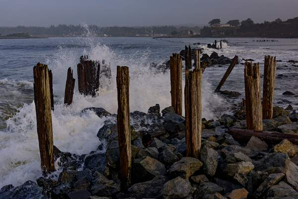 High Surf Pilings In Bandon