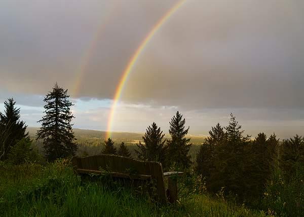 Bench_Rainbow