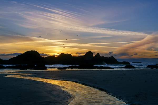 Seal_Rock_Sunset_with_Gulls
