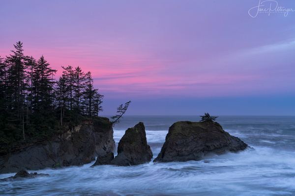 Pink Dawn At Bastendorff Beach by jgpittenger