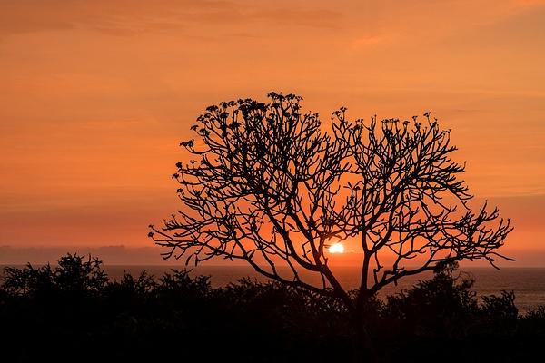 Sun_Going_Down_in_Hawaii by jgpittenger