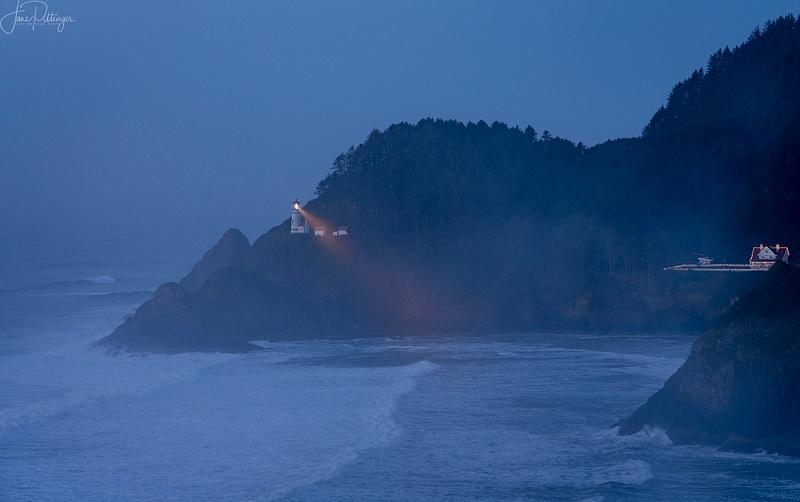 Light_In_the_Fog