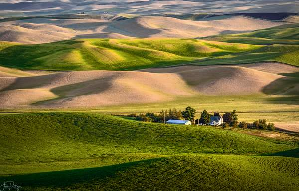 Farm Nestled In the Hills Of the Palouse