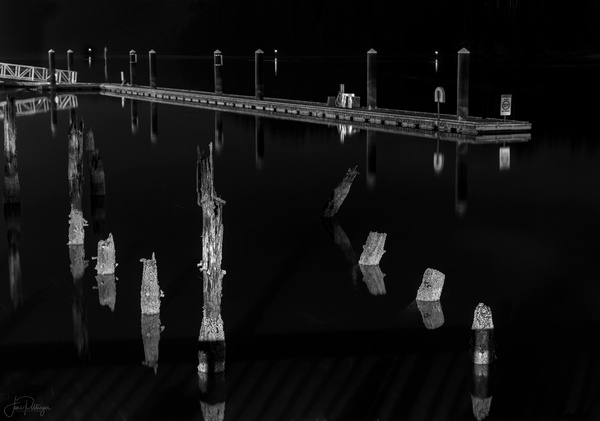 Pilings and Dock