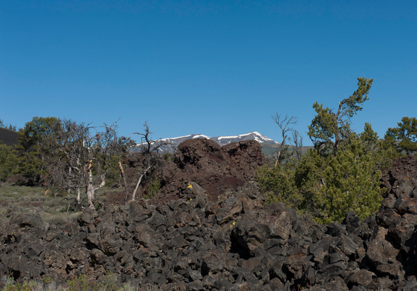 Craters of the Moon NM 2013-5549 by Robert Duncan